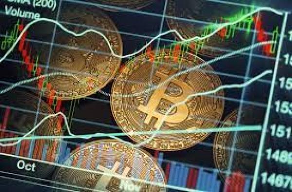 crypto news india